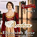 Amber: Daughters of the Dagger Series, Book 3 Audiobook by Elizabeth Rose Narrated by Brian J. Gill