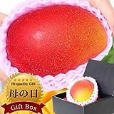 母の日 グルメギフト ぐるめライン 宮崎県産完熟マンゴー 1個 3?4Lサイズ