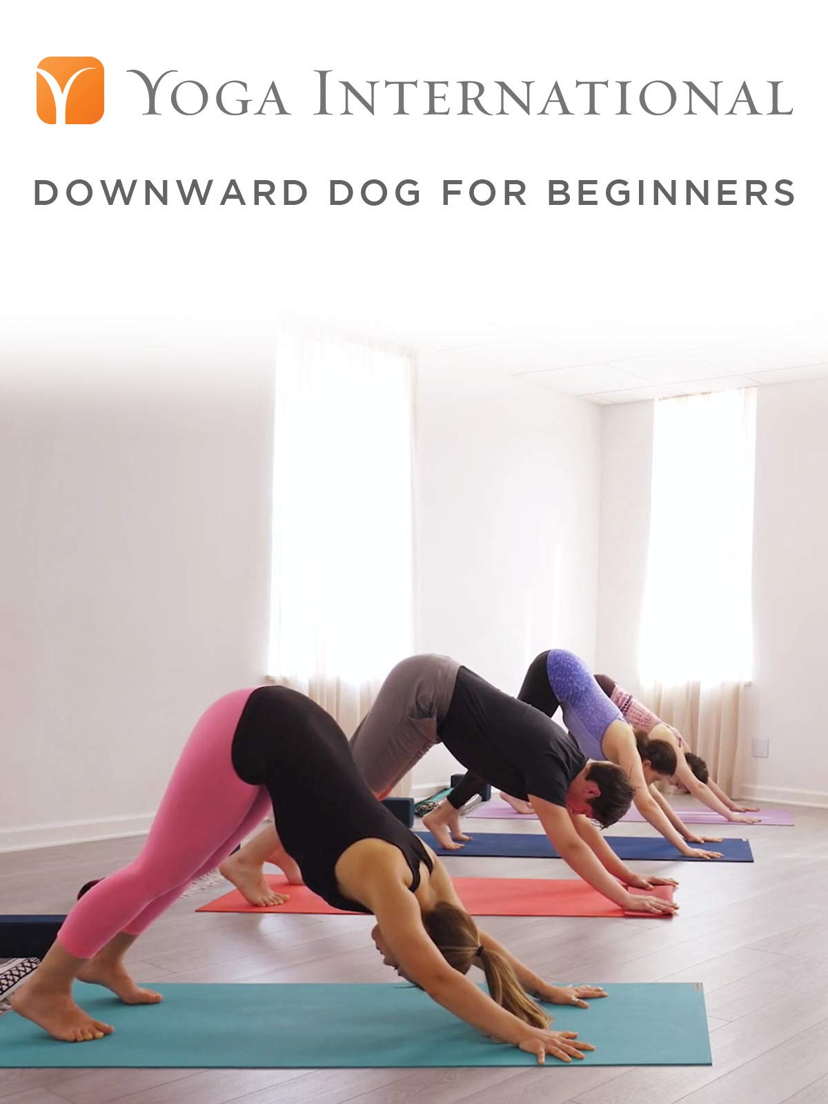 Downward Dog for Beginners