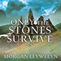 Only the Stones Survive Audiobook by Morgan Llywelyn Narrated by Michael Healy