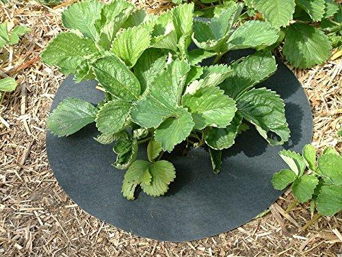copper-impregnated-strawberry-mats-keep-slugs-snails-away-from-plants-11-27cm-diameter-20