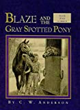 Blaze and the Gray Spotted Pony (Blaze Series) (0780778855) by Anderson, C. W.