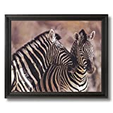 Wild African Safari Striped Zebra Home Decor Wall Picture Black Framed Art Print