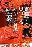 京都で見つけるとっておきの紅葉 (京都を愉しむ)