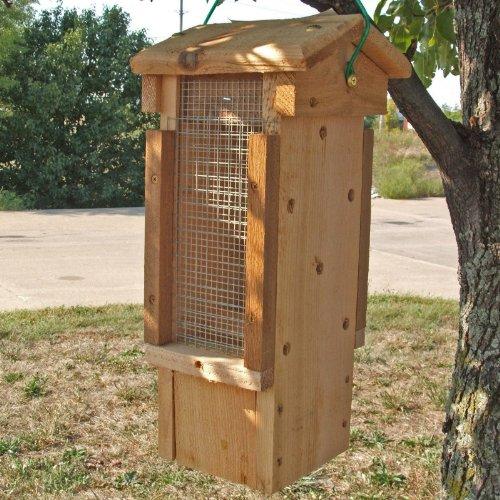 Cheap Ultimate Woodpecker Feeder (SESCS3003RW)