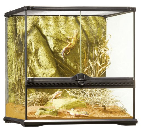 Exo Terra All Glass Terrarium, 45x45x45cm