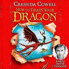 How to Train Your Dragon | Livre audio Auteur(s) : Cressida Cowell Narrateur(s) : David Tennant