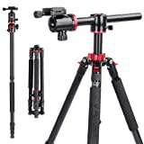ZOMEI Camera Tripod,Overhead Tripod Professional Tripods 4 Section Horizontal Tripod with 360 Degree Ball Head Plate for Canon DSLR DV Scope Camcorder and Projector(72 inch) (Color: M8 Black)