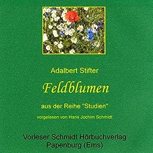 Feldblumen Hörbuch