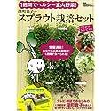 1週間でヘルシー室内野菜! 深町貴子のスプラウト栽培セット (<バラエティ>)画像