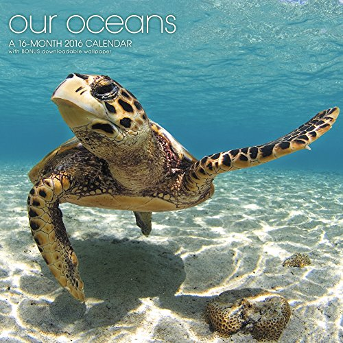 Our Oceans Wall Calendar (2016)