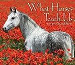 What Horses Teach Us 2015 Daily Box C...