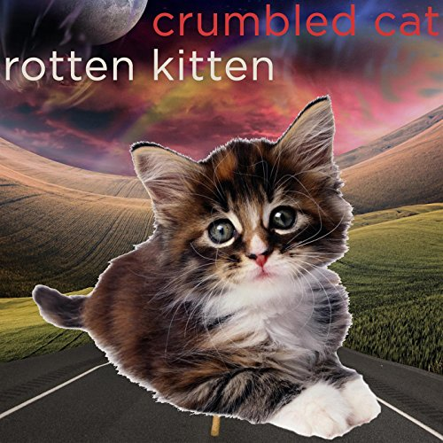 Just A Cool Pic (Kitten Pics compare prices)