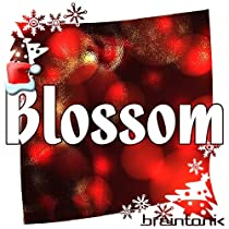 Blossom Holiday Edition