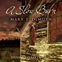 A Slow Burn: Defiance Texas Trilogy, Book 2 Audiobook by Mary E. DeMuth Narrated by Reneé Raudman