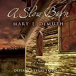 A Slow Burn: Defiance Texas Trilogy, Book 2 | Mary E. DeMuth