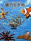 沖縄のサンゴ礁を楽しむ磯の生き物