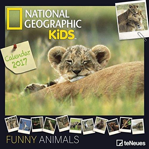 2017-funny-animals-calendar-teneues-grid-calendar-national-geographic-humour-calendar-30-x-30-cm