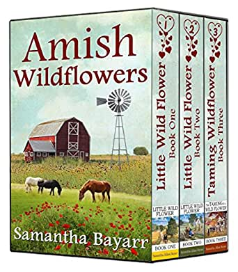 amish wildflowers amish romance collection little wild