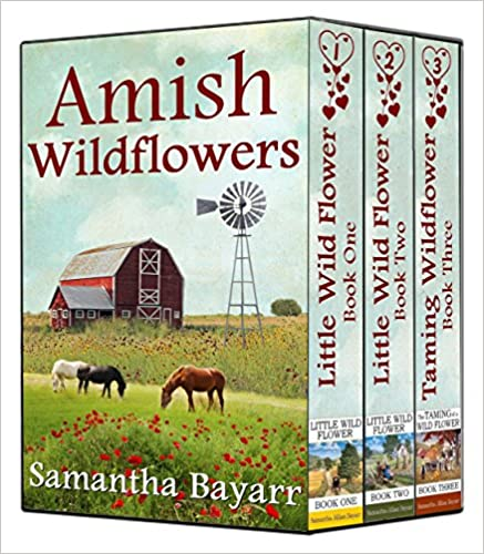 Amish Wildflowers: Little Wild Flower BOXED SET: Little Wild Flower: Book 1, Little Wild Flower: Book 2, The Taming of a Wild Flower: Book 3