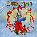 Band of Joy [+digital booklet]