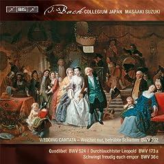 Quodlibet, BWV 524