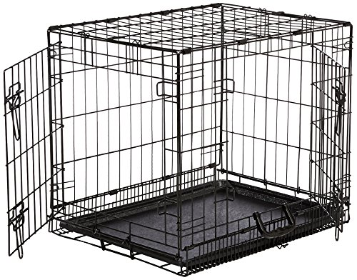 AmazonBasics Double-Door Folding Metal Dog Crate - Small (24x19x18 Inches) (Double Door Dog Crate 24 compare prices)