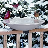 Allied Precision 20 in. EZ Deck Tilt and Clean Heated Bird Bath