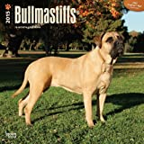 Bullmastiffs 18-Month 2015 Calendar