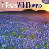 Texas Wildflowers 2015 Square 12x12