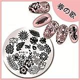 Amazon.co.jp春の歌 【海の植物テーマ】綺麗な海藻の葉柄 イメージプレートスタンピングプレートネイルアート 春の歌-16