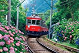 パズルの超達人EX検定ゴールド 2542スーパースモールピース アジサイと箱根登山電車 76-011