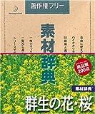 素材辞典 Vol.20 群生の花・桜編