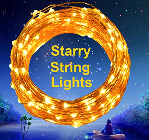 Outdoor String Lights Extra Long : Extra Long 40ft 125 LEDs Warm White LED Copper Wire Indoor Outdoor String Lights + Include 6V DC ...