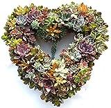"""Succulent Heart Living Wreath - 15"""""""