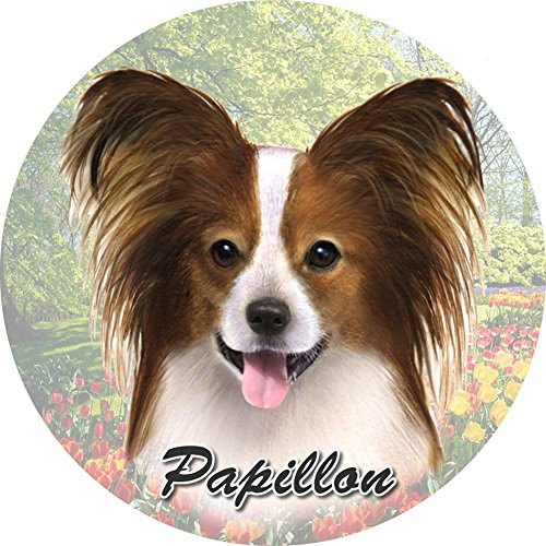 ES Pets Absorbent Stoneware Car Cup Holder Coaster, Papillon
