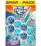 WC Frisch Kraft Aktiv Frische Brise Sparpack, 1er Pack (1 x 2 Stück)