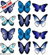 PRE-CUT LARGE BLUE BUTTERFLIES EDIBLE WAFER / RICE PAPER CUP CAKE TOPPERS BIRTHDAY WEDDING DECORATION B28