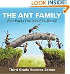 The Ant Family - Fun Facts You Need T...