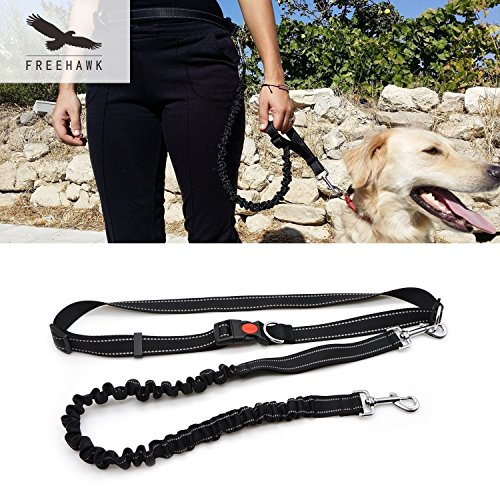 Hands Free Dog Leashes For Jogging