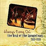 Always Carry on: The Best of the Spongetones 1980-2005