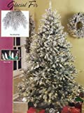 6.5' Pre-Lit Full Glacial Fir Flocked Christmas Tree - Clear & Frost Lights