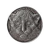 The African Baby Five - Leopardo 5000 Francos 1oz Moneda Plata - Burundi 2014