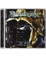 XIII - Nouvel Album