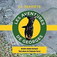 La tempête (Les aventures de Georges) | Livre audio Auteur(s) : Michèle Médée-Bertmark Narrateur(s) : Michèle Médée-Bertmark