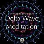 Delta Wave Meditation - Pure Tone Bin...