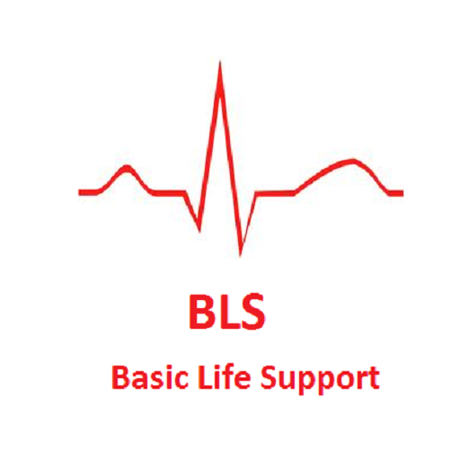 basic life support Get bls certified the american red cross offers basic life support training for  individuals and organizations, as well as bls instructor training.