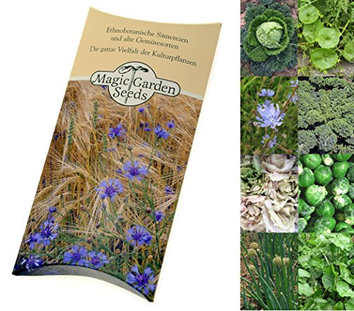 seed-kit-winter-vegetable-plant-seeds-8-vegetable-varieties-that-either-grow-well-in-low-temperature