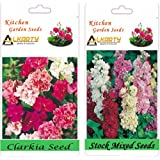 Alkarty Clarkia Mixed And Stock Mixed Seeds Pack Of 20 (Winter)