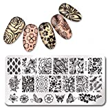 Summer Fruit Nail Art Stamping Template Tropical Punch Pattern Rectangle Image Plate Stamping Polish Needed BP-L043 (Color: BP-L043)